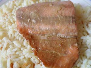 SalmonGlaze